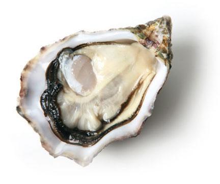 huître Krystale
